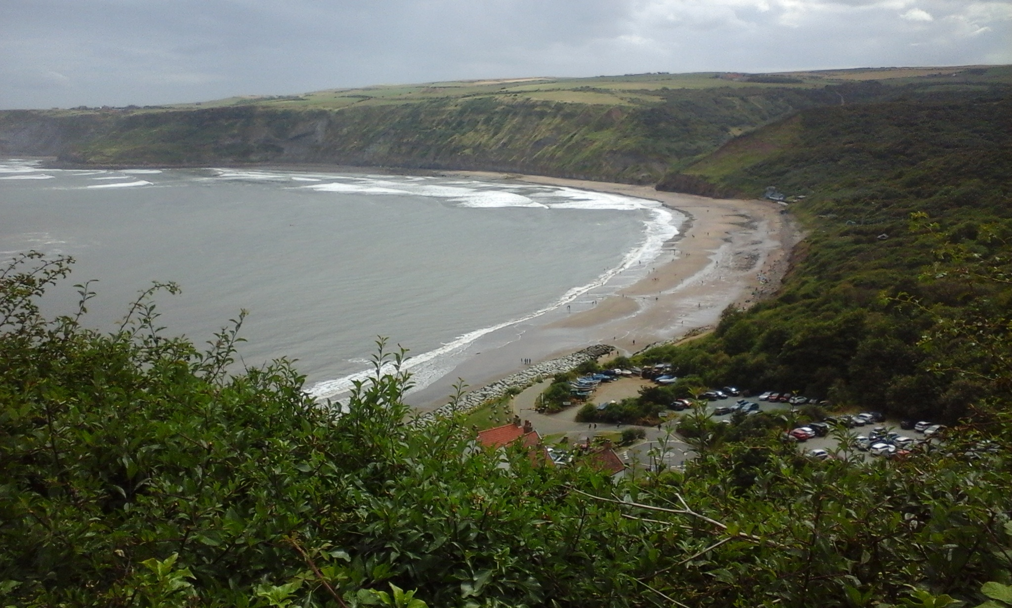 A photo of a nice beach in a small bay, taken from a hill off to the side. A small-leaved tree in the foreground frames the bottom-left, with white-crested waves breaking over the beach in the background, before riding steeply on the way inland.
